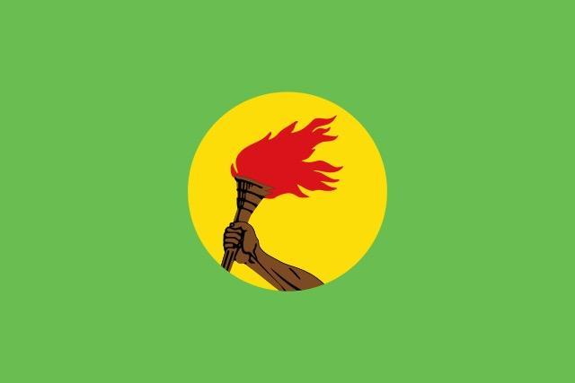 ザイール共和国の国旗.jpg