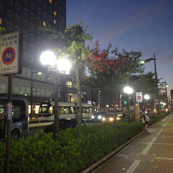 主要地方道富山停車場線道路総合交付金(防災・災防・修繕)照明灯更新工事